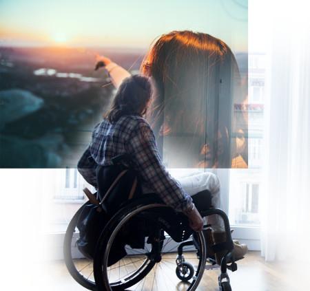 ¿Qué es la discapacidad física y orgánica?