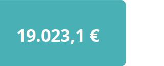 19.023,1€ media con discapacidad