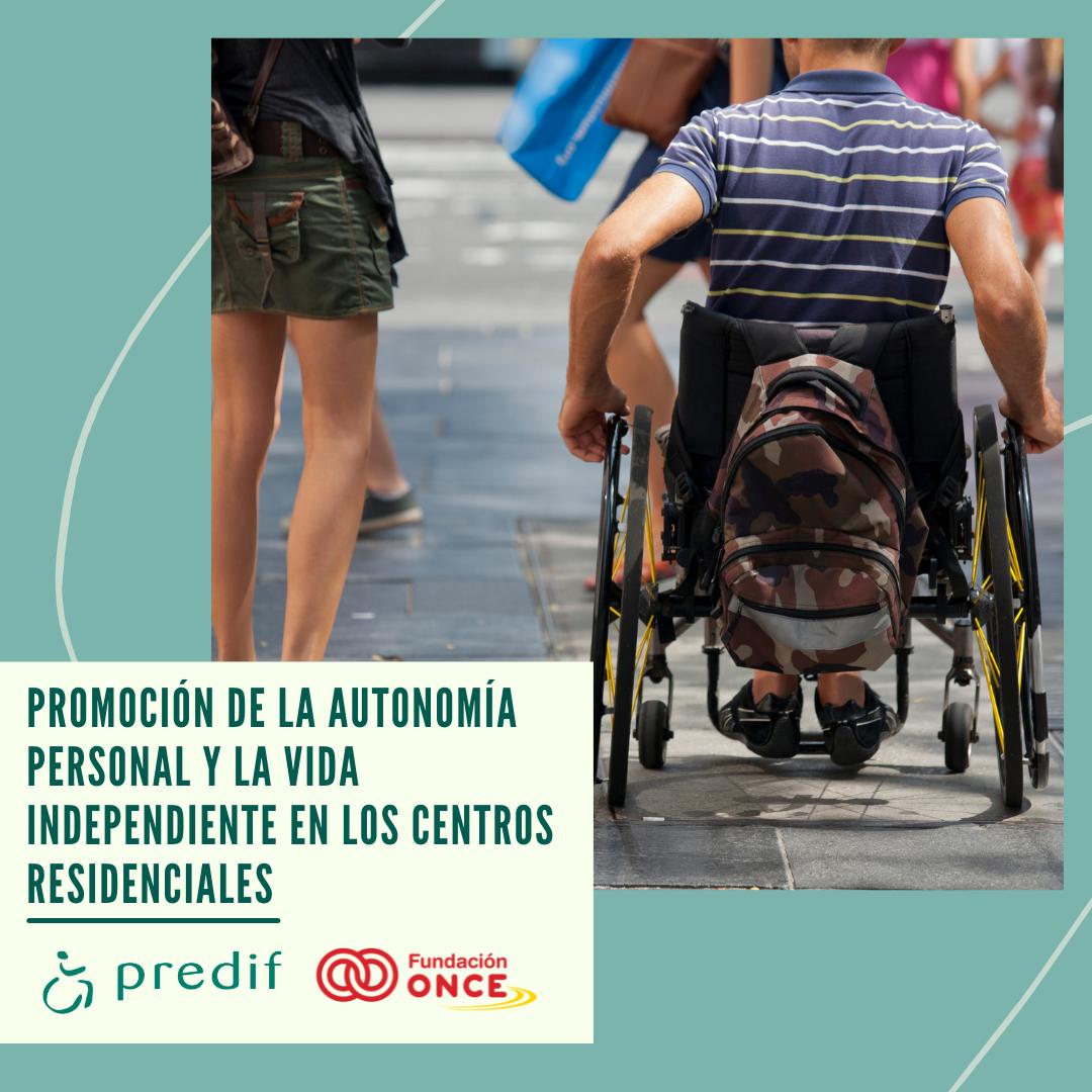 Cartel con el nombre del proyecto, una imagen con un chico en silla de ruedas y los logos de RPEDIF y Fundación ONCE